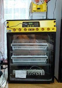Brinsea OvaEasy 100 Advance EX Series II Automatic Incubator with Humidity Pump