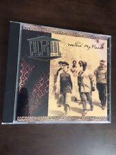Walkin My Planet - Cult Of Soul (CD Used Very Good)