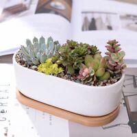 Porcelain Planters Flower Pots White Ceramic Succulent Vases Desktop Home Decors