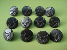 12 BOUTONS DE CHASSE ANCIENS Chien  , Vénerie