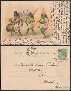 Belgium 1902 - Illustrated postcard - Theme: Frog.... (DD) MV-4751
