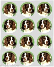 12 Springer Spaniel Dog Cupcake Toppers Printed edible Cake Decorations 40mm