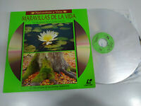 Meraviglie de La Natura vida Privata Le Piante Convivir - Laserdisc Ld 2T