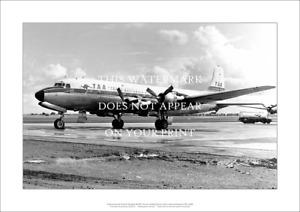 "TAA Douglas DC-6B A2 Print – 1960s livery – Poster 59 x 42 cm 23"" x 17"""