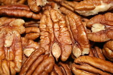 Raw Mammouth Pecan Halves 8 oz