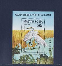 Hongrie  bloc protection de la  nature oiseau  grue    1980   num: BF 150  **