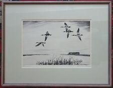 "CHURCHILL ETTINGER Original SIGNED Etching ""SCISSORBILLS"" Birds Framed Nd"