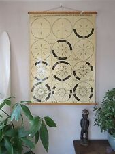 VINTAGE PULL ROLL DOWN SCHOOL WALL CHART OF FRACTIONS MATHEMATICS 1/2 - 1/15