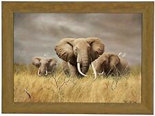 Charles Frace POWER OF THE SERENGETI Framed CANVAS S/N Limited Edition Elephants