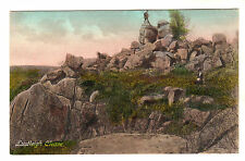 Lustleigh Cleave - Photo Postcard c1905 / Bovey Tracey