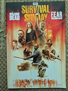 (2) THE WALKING DEAD Poster FEAR THE WALKING DEAD RARE Rick Grimes Michonne