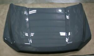 OEM Factory 15-20 Ford F150 Aluminum Hood ABYSS GRAY New Take Off Genuine