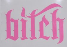 """Bitch"" Funny Rude Pink Car Window Vinyl Decal Sticker for Her ~PINK ONLY!!!~"