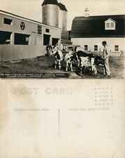 Elizabethtown Pa Masonic Homes Lancaster Cow Farm Vintage Photo Postcard Rppc