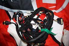 Installation électrique Principal Imp. elec. pour Ducati Monster 1100 Code