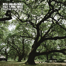 NOEL GALLAGHER'S HIGH FLYING BIRDS THE DYING OF THE LIGHT VINYL SINGLE NEW