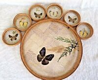 7 Pc Set Bamboo & Pressed Butterfly Serving Tray and 6 Coaster Vintage 1970's