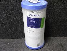 "PENTAIR/PENTEK 30 Micron Filter, 4-1/2"" Dia, 9-3/4"" Height, 10.00 gpm, 155101-75"
