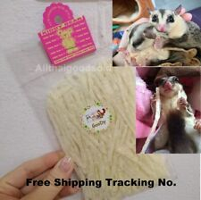 Pet Fish Protein Snack Hamster Sugar Glider Animal Pet Teeth Care 17g