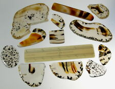 Montana Agate Assortment  Slabs and Polished Pieces Lot A