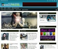 Magic Tricks Wp Blog Established Profitable Turnkey Wordpress Website For Sale