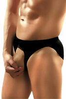 Men's Pouchless Open Front C-Ring Brief by Male Power Underwear Black One Size
