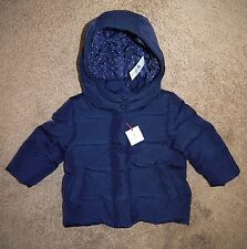 New With Tags Baby Girl Baby Gap babyGap Down Winter Coat, Navy, 12-18 months