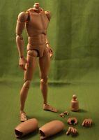 NEW 1/6 Caucasian Male Normal Shoulder Nude Body Figure B002