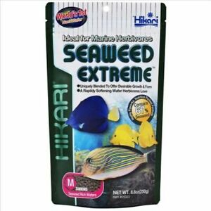 Hikari Seaweed Extreme Medium Sinking Wafer 250g Marine Herbivores Fish Food