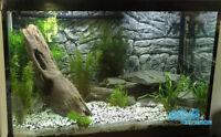 3D Thin Grey Background For Aquarium Fish Tank Vivarium Reptile  1-2 cm deep