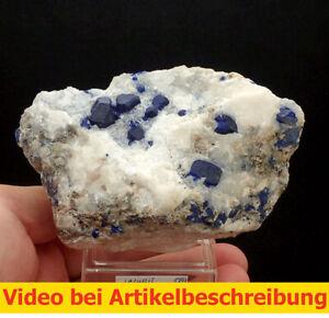 7095 Lazurite Lapis Lazuli ca 6*12*7 cm Badachshan Afghanistan  MOVIE