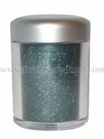 CHOOSE A COLOUR COLLECTION 2000 DAZZLE ME ! SHIMMER EYESHADOW DUST LOOSE POWDER