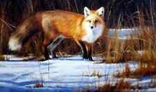 """Edward Aldrich"""" Fox on the Run"""" Art Print Signed and Numbered"""