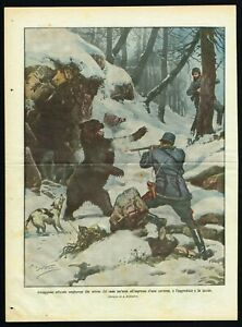 Bear Killed by Hungarian Officer in Cave Entrance, DDC Newspaper Cover 1911