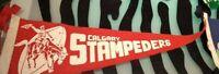 Calgary Stampeders Pennant Vintage 50s Kenora Edmonton Victoria Regina Lot of 11