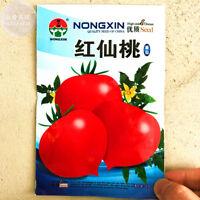 Tomato Fresh Seeds 300PCs 'Red Flat Peach' Non-GMO Vegetable Garden Big Harvest