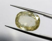 6.42 Ct Natural Yellow Sapphire Loose Very Good Luster No Heat Old Sri Lanka Gem