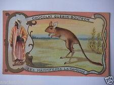 "CHROMOS ANNÉE 1890-1900 CHOCOLAT GUÉRIN-BOUTRON LES MAMMIFÈRES "" LA GERBOISE """