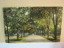 Victoria Park Driveway London Ont. Canada Antique 1910's Postcard  T*