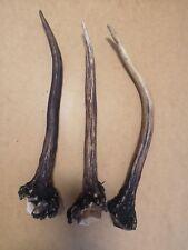 Lot 3 Deer Antler Stag Piece Template  Knife Dagger Door Walking Handle # 4011