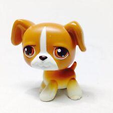 Littlest Pet Shop #25 BOXER Puppy Dog brown white & Caramel Retired, Rare LPS