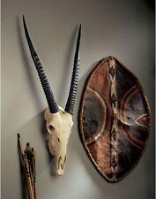 "37"" Wildlife African Savannah Majestic Horns Gemsbok Skull Animal Wall Trophy"