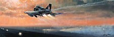 Cold War F4 print Phantom Thunder by P West signed by 2 distinguished RAF pilots