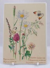Villeroy & and Boch VILBOCARD A54 JUNE Edith Holden flowers UNUSED BL071