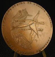 Medal Seaboard Lake Shores Geese Duck Birds C Bizette-Lopez Medal 铜牌