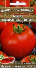 """Tomato """"Voyage of the North"""" F1 Russian High Quality seeds"""