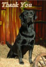 Labrador Retriever Thank You Card By Starprint - No 2