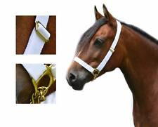 "1"" Web Adjustable White In Hand Show Halter Chain Lead Welsh Pony Cob M&M Cobs"