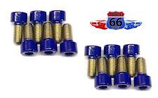 (12) M8 x 1.25 x 16 Stainless Steel Socket Head Allen Screws Powder Coated Blue