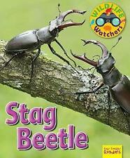 Wildlife Watchers: Stag Beetle: 2017 by Ruth Owen (Paperback, 2017)